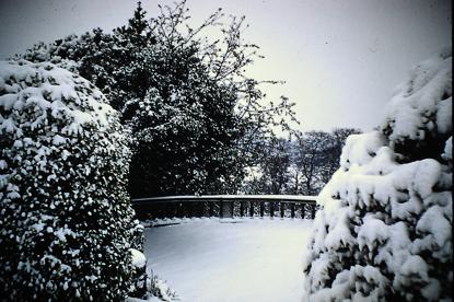 terrace1950s