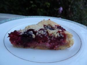 mulberrytart3